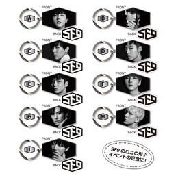 """キーホルダー(SF9 1st SHOWCASE IN JAPAN """"Fanfare"""")"""