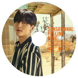 SF9 JAPAN 1st アルバム「Sensational Feeling Nine」【YONG BIN:完全生産限定ピクチャーレーベル盤】
